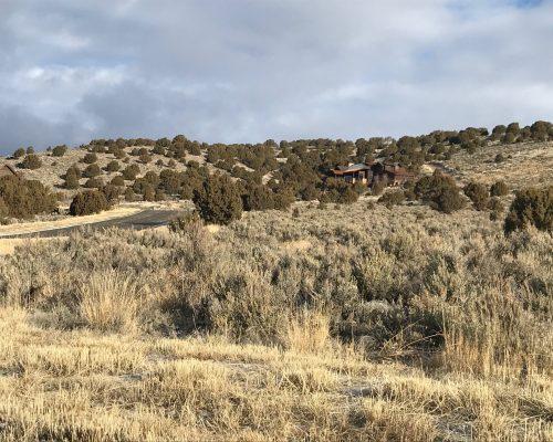 466 N Ibapah Peak Drive