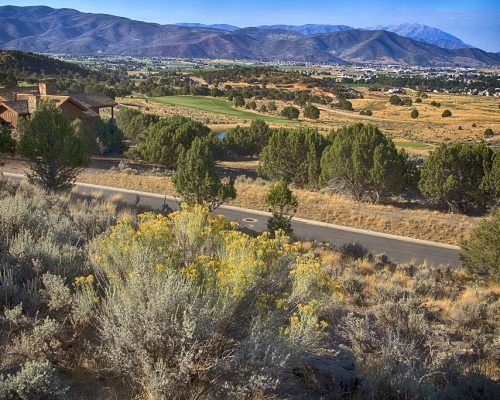 2145 E Flat Top Mountain Drive