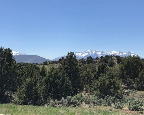 315 N Ibapah Peak Drive