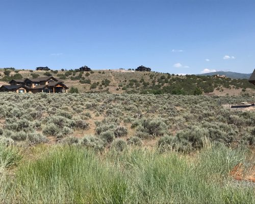 1254 N Oquirrh Mountain Drive