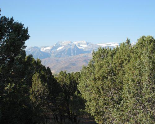 671 N Bald Mountain Cir
