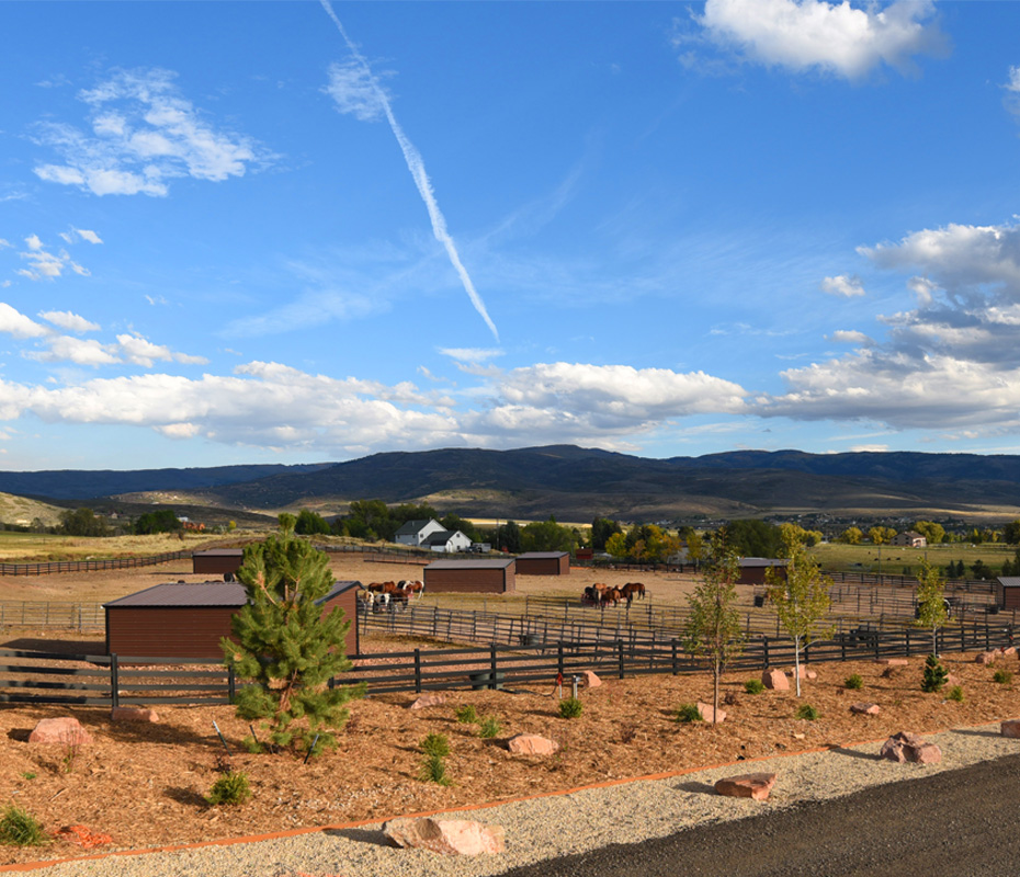 Horse Leasing Near Park City