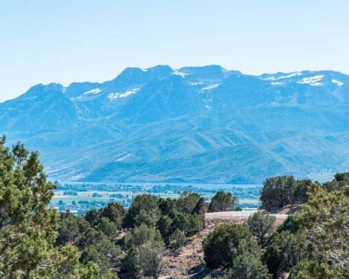 2737 E La Sal Peak Drive
