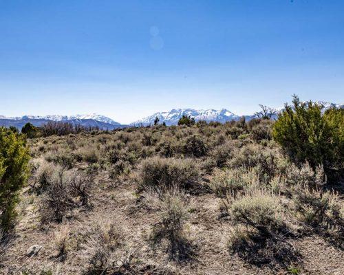 2784 E. Boulder Top Loop